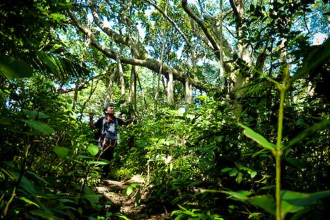 Rimbun hutan menuju Langee. Foto | Fakhrizan