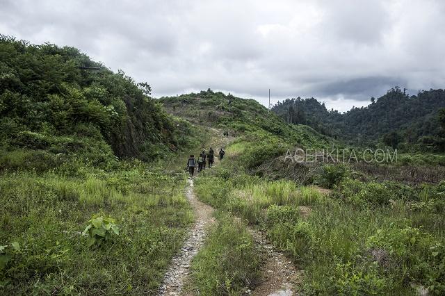 Hutan_2
