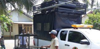 Ular Piton Sepanjang 5 Meter Ditemukan Dekat Rumah Warga